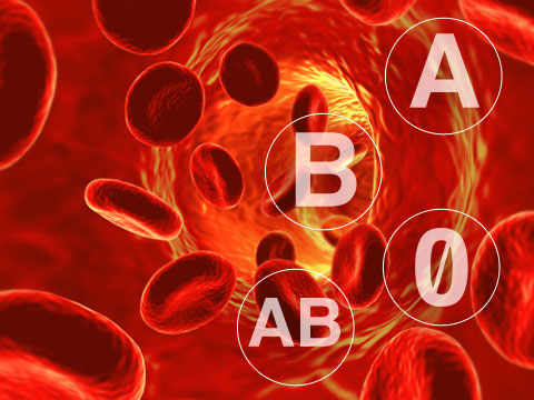 Gjaku-grup
